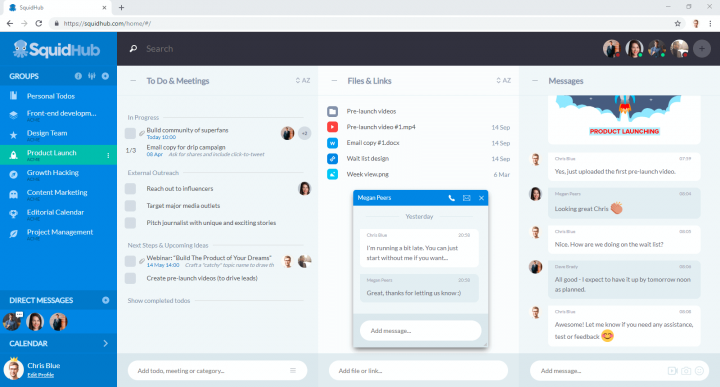 Screenshot of collaboration tool Squidhub
