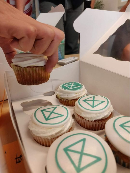 User interview treats, the cupcakes