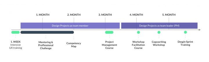 Internal taining system: education timeline