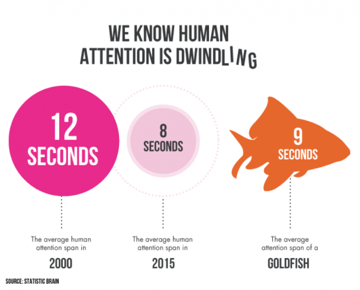 Human Attention goldfish